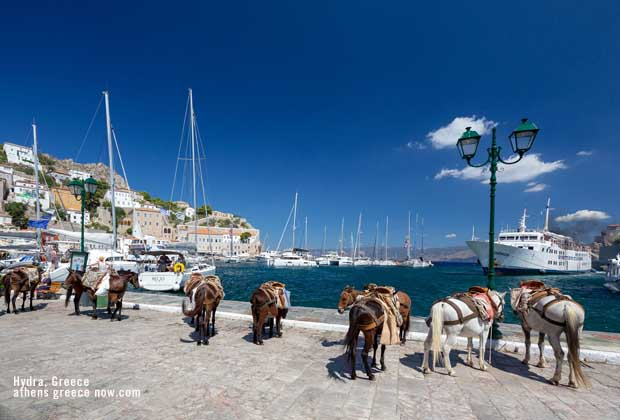 Donkey ridingon Hydra Greece